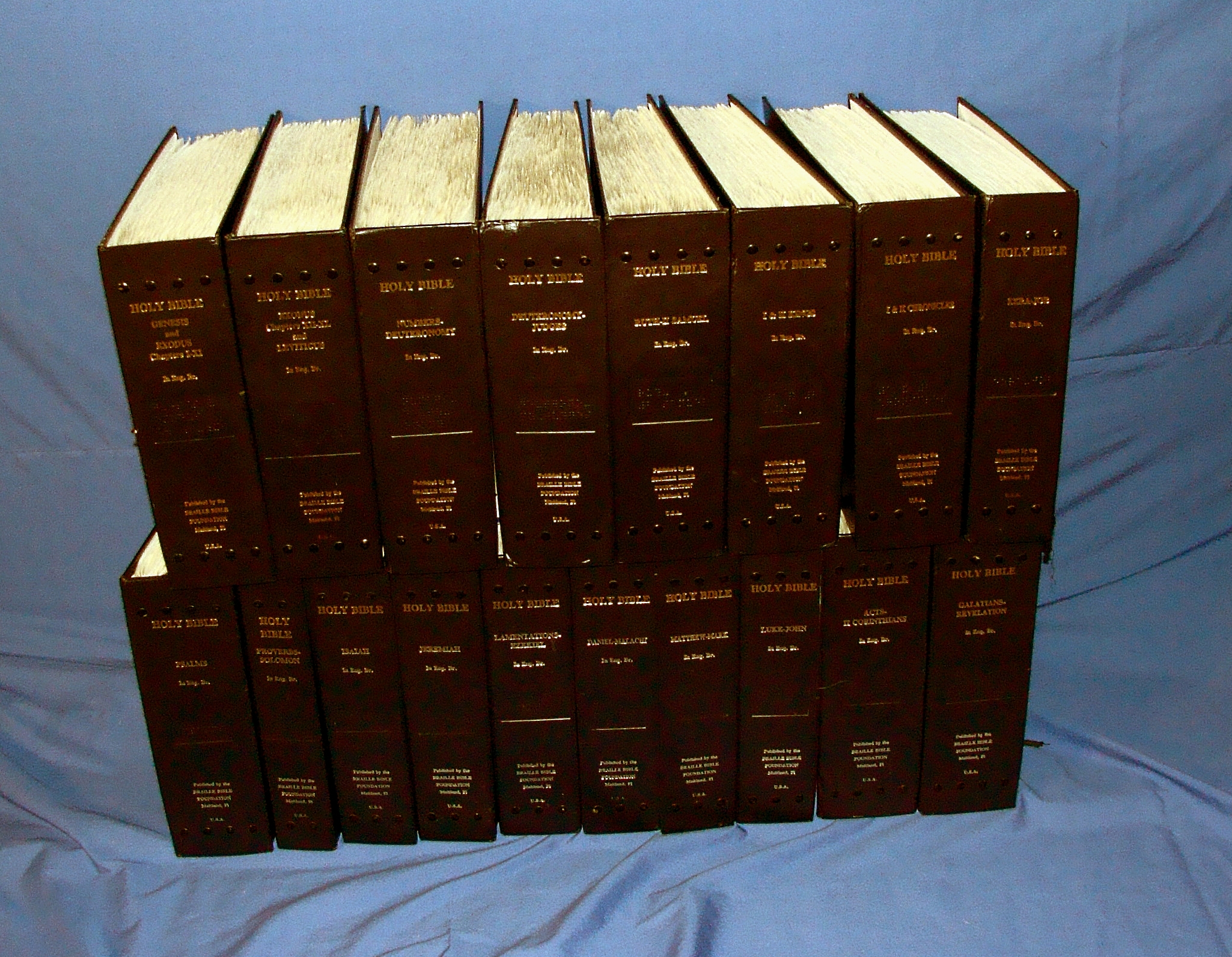 18 volume braille bible